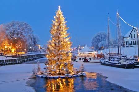 Schwimmender Weihnachtsbaum